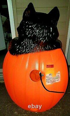 VTG RARE Halloween TPI Witch Pumpkin & BLACK CAT Plastic Lighted Blow Mold 26